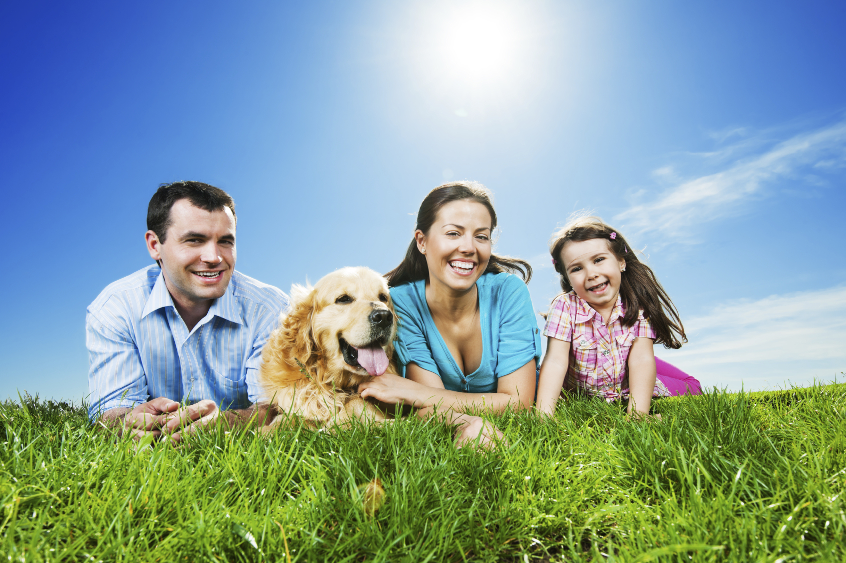 healthy pets can lead to healthy people healthcomu