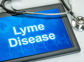 Lyme-Disease-Tick-Health