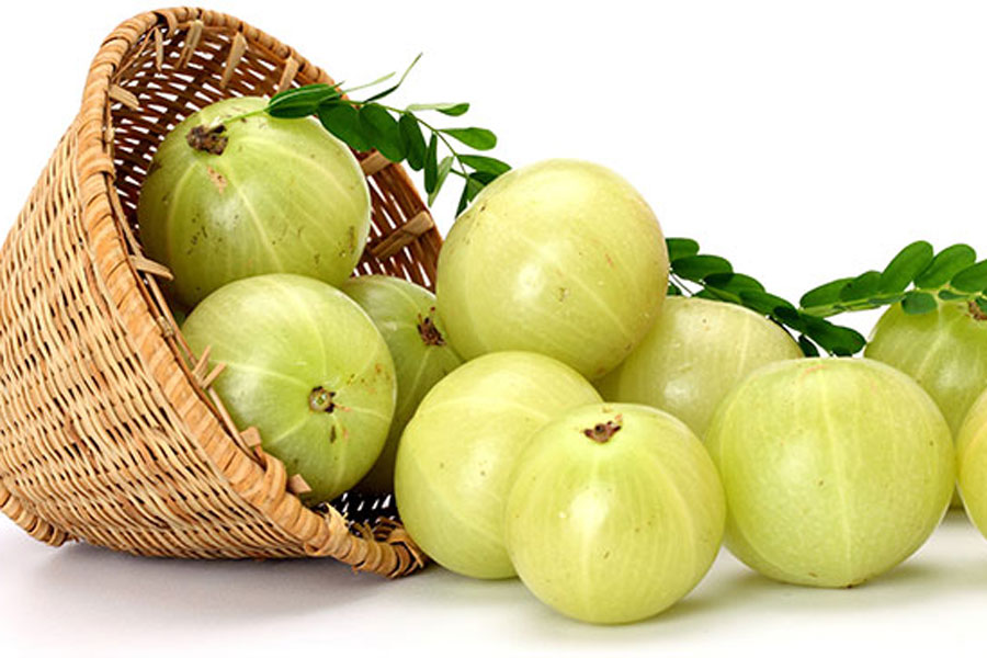 Hair-Loss-Amla-Indian-Gooseberry-Benefits