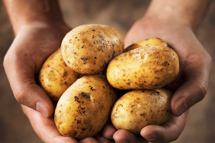 Potatoes-Health-Benefits-Hair-Loss-Starch