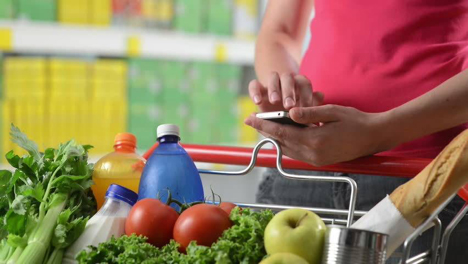Nutrition-Plan-Shopping-Diet-Health-Grocery-Fresh-Food-Market-Internet