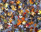 Hans-Peter-Gauster-Puzzle-Art-Mental-Health-Alzheimers-Disease-Brain-Phyiscal