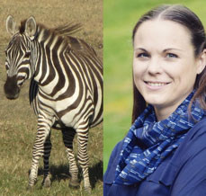 EDS-Patient-Ehlers-Danlos-Society-The-Hungry-Zebras