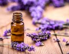 Lavender-Essentail-Oil-Natural-Care-Skin-Health-Benefits-Tips